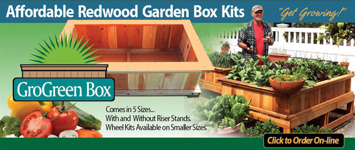 Garden Box Raised Garden Vegetable Garden