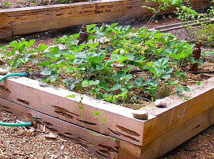 - Landscaping Materials Gardening Material & Tools
