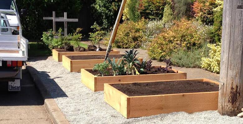 garden box raised garden vegetable garden