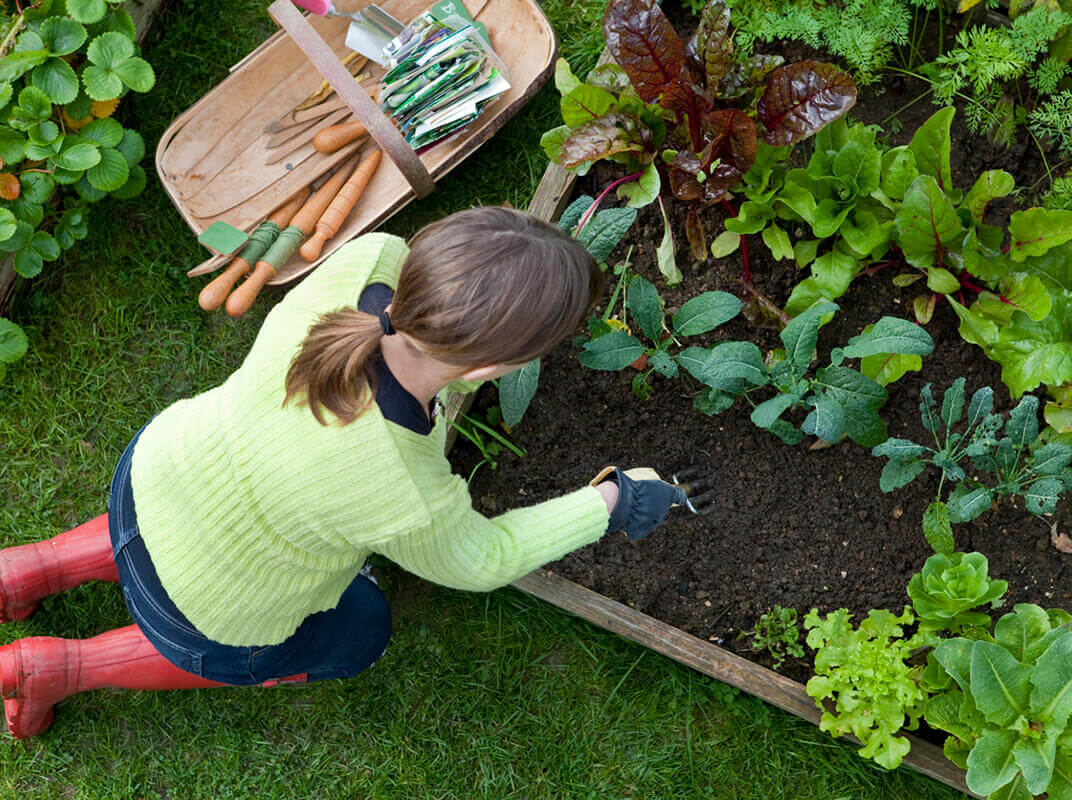 The Garden Box Brainstorm: It's Time to Get Creative
