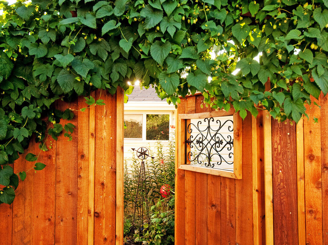 Accent Your Garden With These Landscape Ideas