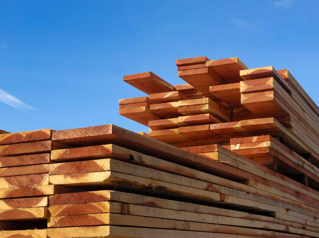 Choosing the Best Lumber for Your Garden Box