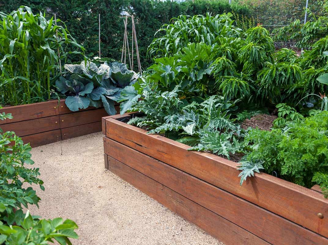 Need to Know: Garden Box Ideas  Home Improvement Tips  J&W Lumber