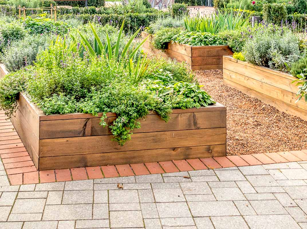 How To Go Green with a Raised Garden Bed